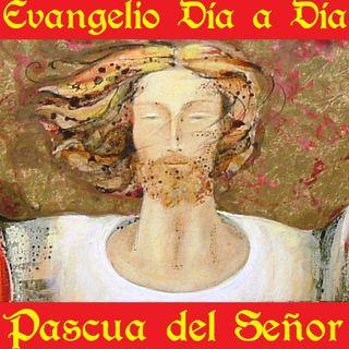 La Pascua del Señor - Evangelio del 01/04/2018 - Domingo de Resurrección - Jn 20, 1-9