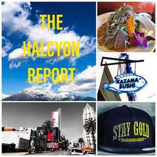 THE HALCYON REPORT - EPISODE 38- MEMORIAL DAY WEEKEND SPECIAL