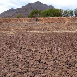 Alerta el Servicio Meteorológico Nacional, que el territorio nacional se encuentra con algún grado de sequía