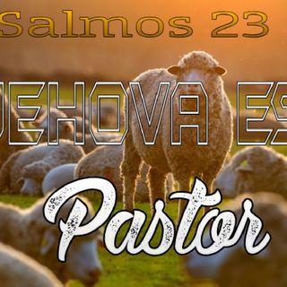 TEMA:JEHOVA ES MI PASTOR   SALMOS 23