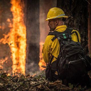 Qual è il bilancio degli incendi in Australia?