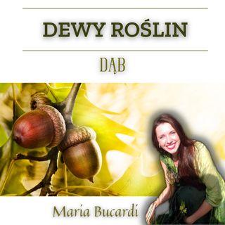 Dewy Roślin - Dąb - spotkanie z Maria Bucardi