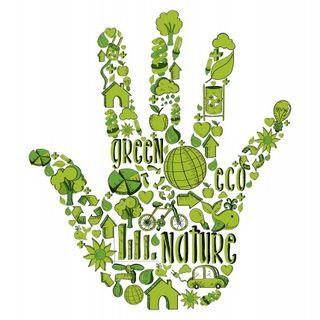 Rivoluzione green economy | L'importanza di fare networking | Millionaire di giugno