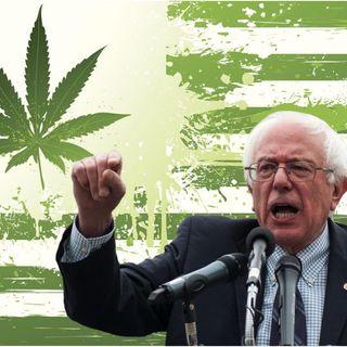 @BernieSanders PROPOSE BUSINESSES FOR BLACK PEOPLE: SELLING WEED!