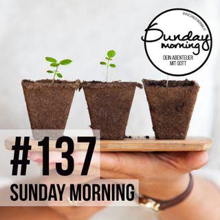 PLANT | SAAT UND ERNTE - Sunday Morning #137