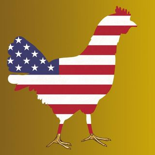 This Week in Tech 786: The Chickenization of America