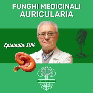 Funghi Medicinali: AURICULARIA