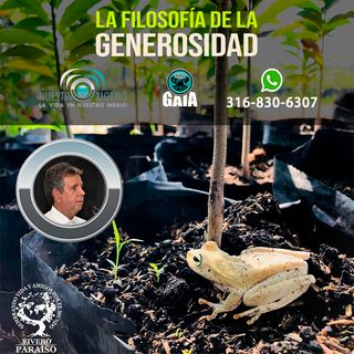 NUESTRO OXÍGENO La filosofía de la generosidad - Hernando Betancourt