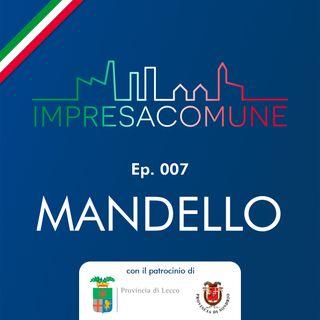 ImpresaComune, ep. 007 - MANDELLO