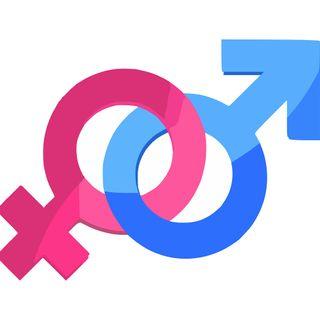 UNIVERSEXO 02 DICIEMBRE 2019 Tipos y Modalidades de Violencia contra las Mujeres, niñas y Adolescentes
