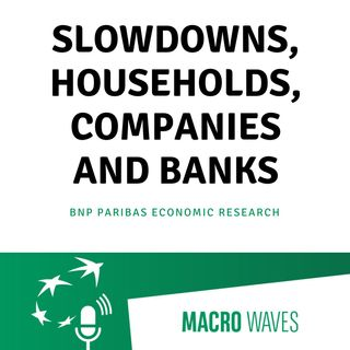 #02 - Slowdowns, households, companies and banks