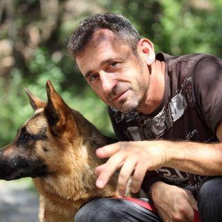 Koala Killers - Intervista a Luca De Antonis