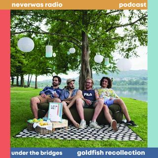 GOLDFISH RECOLLECTION Intervista