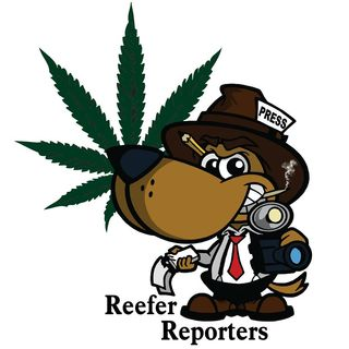 Reefer Reporters - May 20/19