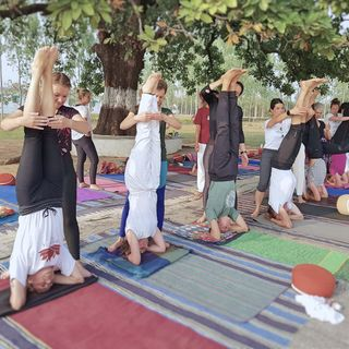 Which are the bestYoga Ashrams in India?