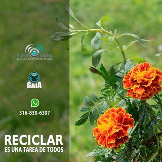 NUESTRO OXÍGENO Reciclar es una tarea de todos - Lic. Alicia Benitez Hernández