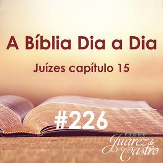 Curso Bíblico 226 - Juízes Capítulo 15 - A vingança de Sansão - Padre Juarez de Castro