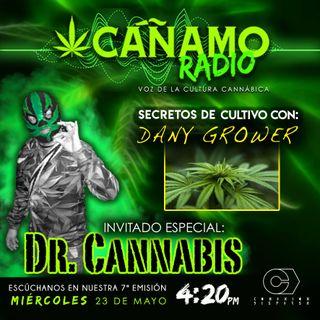 Canamo Radio Septima Emision