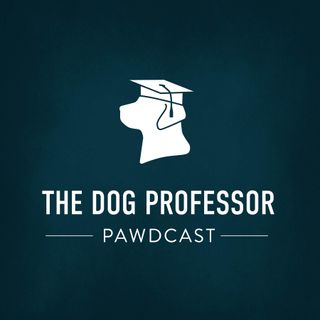 The Dog Professor Pawdcast!