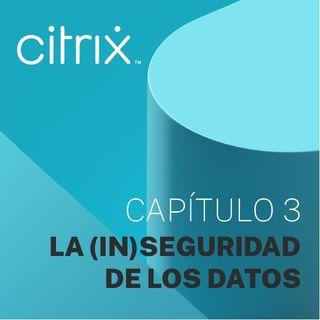 Capítulo 3 - La (in)seguridad de los datos