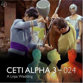 024 - A Lirpa Wedding