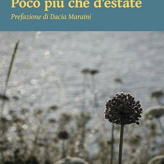Poco più che d'estate  - di Luisa Di Maso