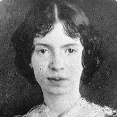 Emily Dickinson: Non conosciamo