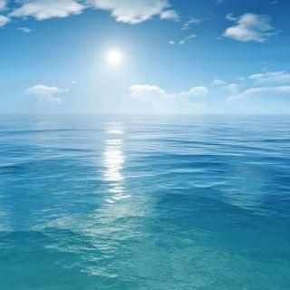 Una gota en el océano de la vida