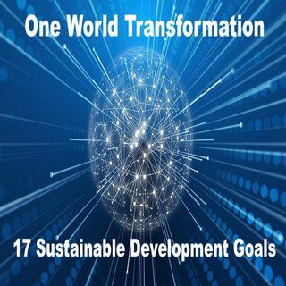 Ep. 43 -  1WT: 17 Sustainable Development Goals