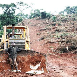 I padroni della terra che ostacolano la transizione ecologica