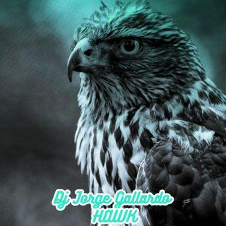 13 - Hawk (Club Mix)