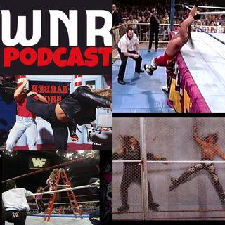 WNR137 WWE Superstar Profile Shawn Michaels