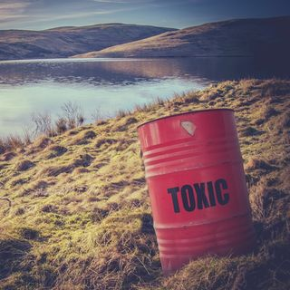 What is toxic in your life?
