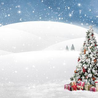 White Fluffy Christmas