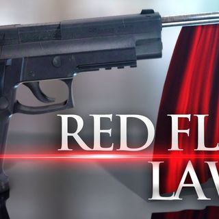 Red Flag Gun Laws are for Treasonous Wusses
