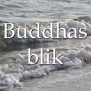 Buddhas blik på nuet