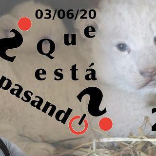 Nacho vidal | ¿Que esta pasando? 23 (03/06/20)