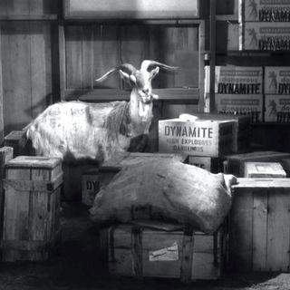 67: Okay, Mayor, You Shoot The Goat (w/ Darryl Charles)