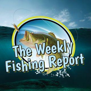 Weekly Fishing Report-Lake Buchanan