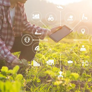 RADIO ANTARES VISION - The potential of AI in the agribusiness sector towards a global perspective in terms of sustainability