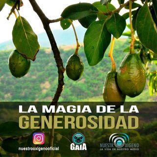 NUESTRO OXÍGENO La magia de la generosidad