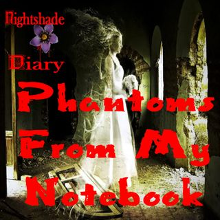 Phantoms From My Notebook | True Ghost Stories | Podcast