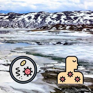 Life Has Revived AGAIN From The Permafrost - Is This The Beginning Of Huge Problems?