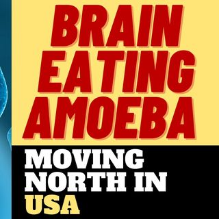 BRAIN EATING AMOEBA MOVING NORTH THROUGH U.S.