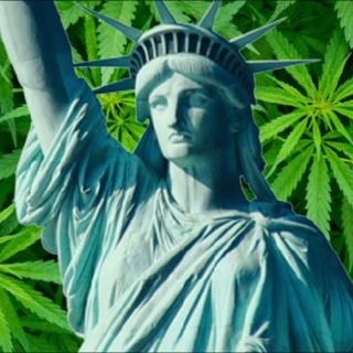 NY Preps for Legalized Cannabis- What We Know So Far