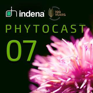 Phytocast 07: Innovazione Tecnologica