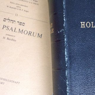 Psalm 61:6 - 8, August 22, 2014