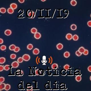 Un fármaco celular para combatir la enfermedad de Crohn | La Noticia Del Dia