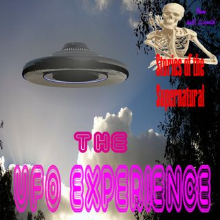 The UFO Experience | Interview with Kathleen Marden | Podcast