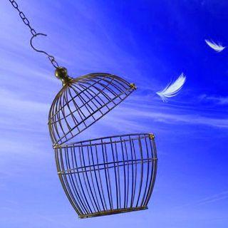 Meditazione Per Le Ossessioni